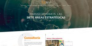 diseño de paginas web ejemplos 02