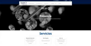 diseño de paginas web ejemplos 01
