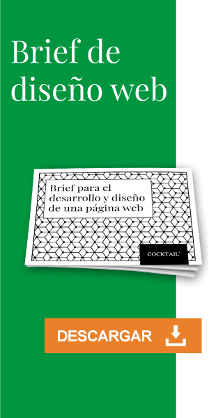 Descargar brief pagina web PDF